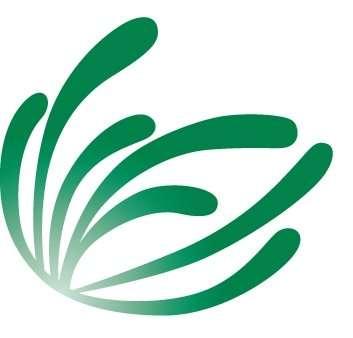 CS-Green-image-Logo