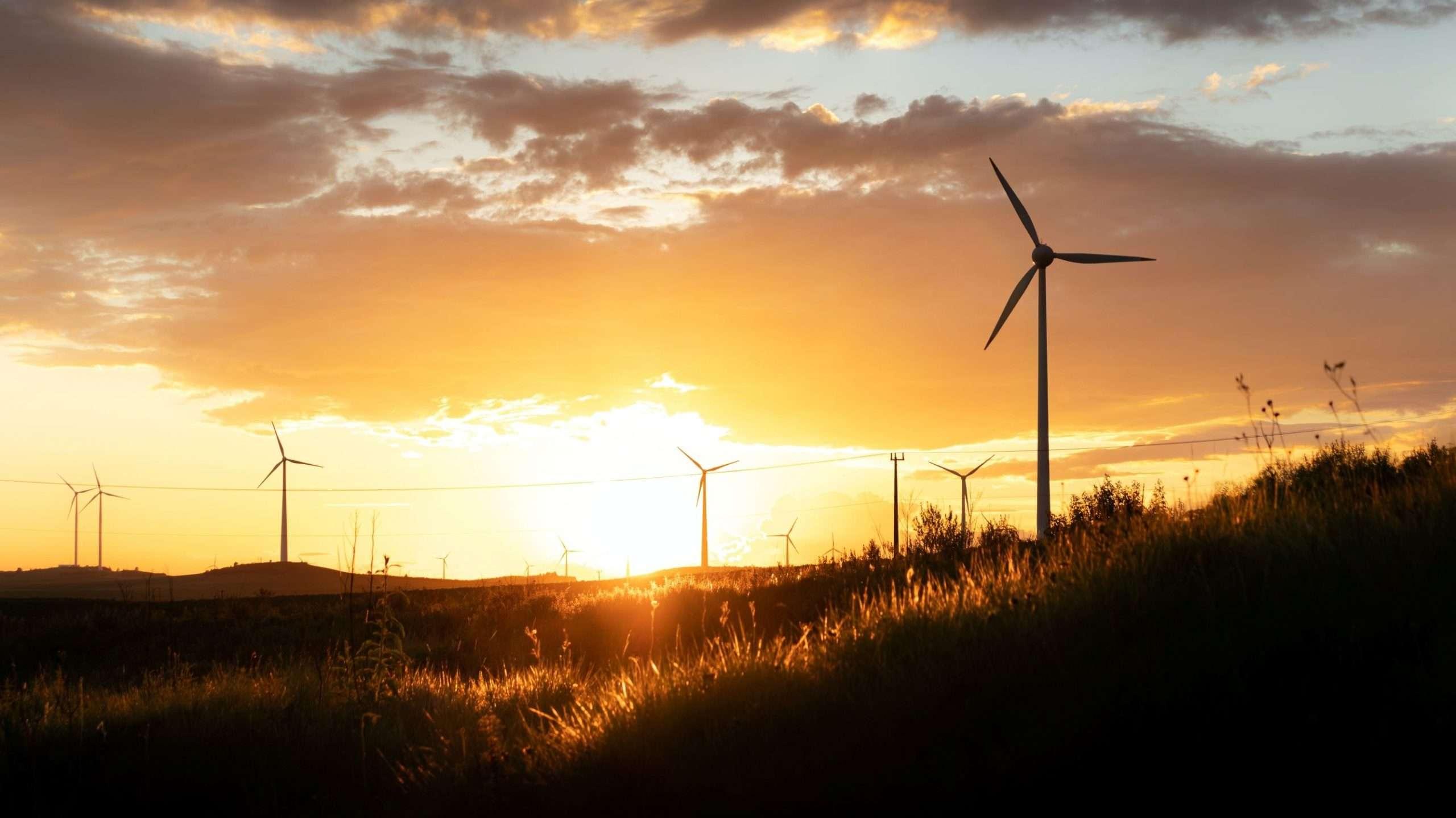 Wind park at dawn