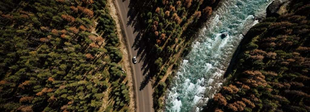 A road running through a forest, meeting ar river
